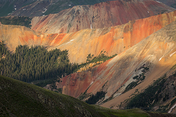 Colorado's Red Mountains