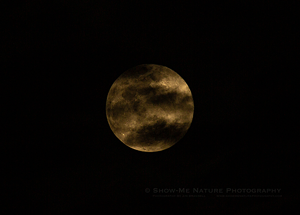 March 2019 Super Moon