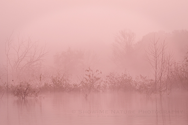 Early sunrise lighting through dense fog on the lake
