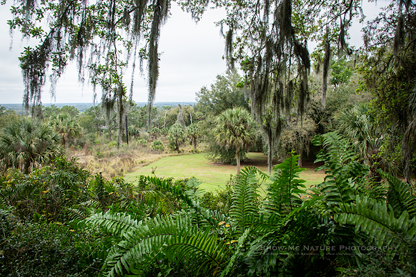 The picturesque landscape at the Bok Tower Gardens, Florida