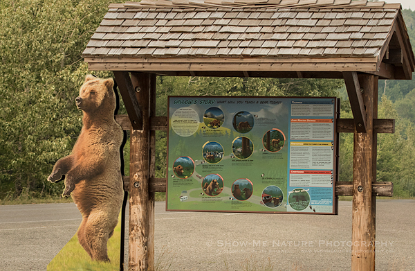 Bear Safety Kiosk, Glacier NP (MT)