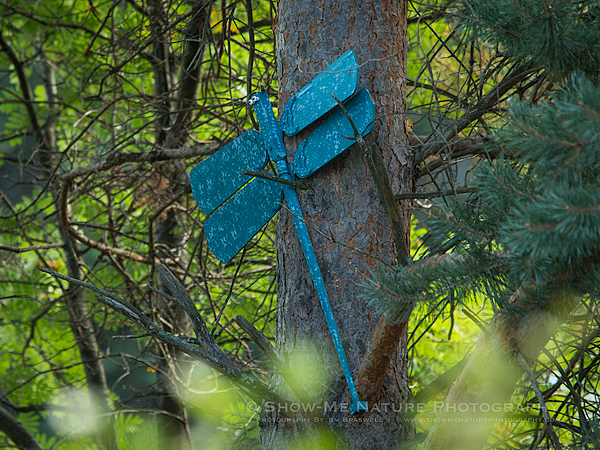 Fabricated Dragonfly garden ornament