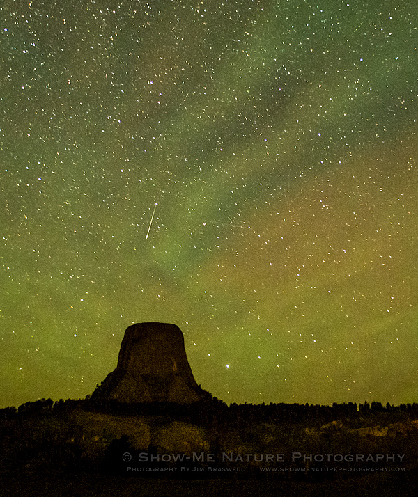 Perseid meteor shower over Devil's Tower NM
