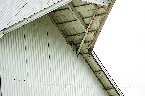 Barn where Barn Owls nest