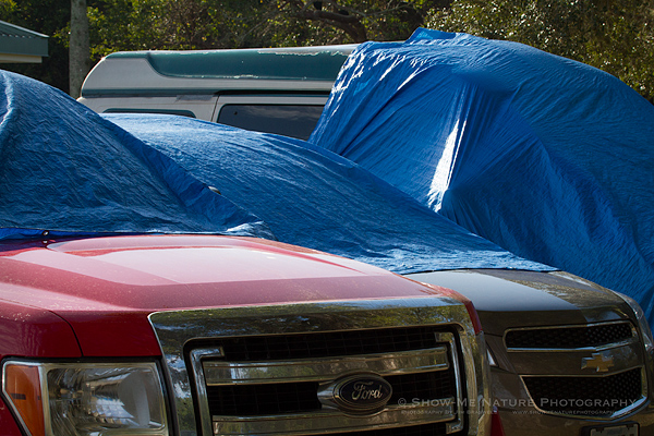 Early morning visitors' cars, protected with tarps