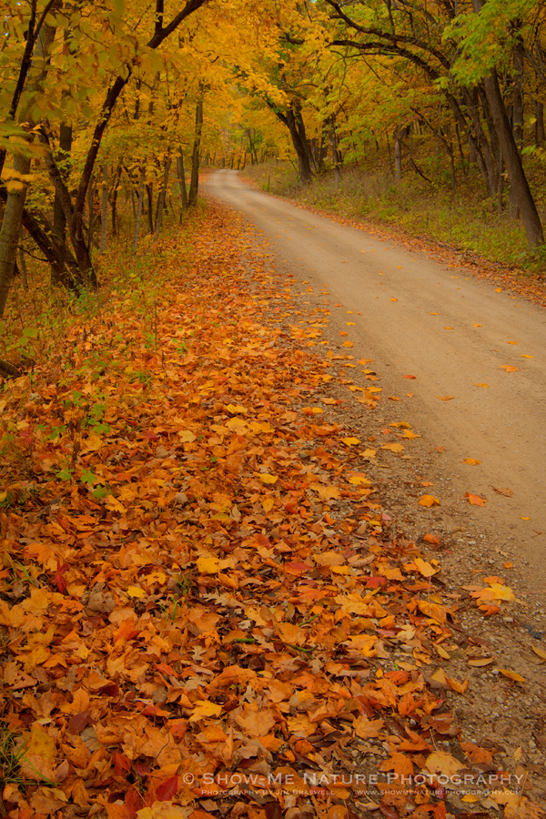 Winterset City Park's fall colors