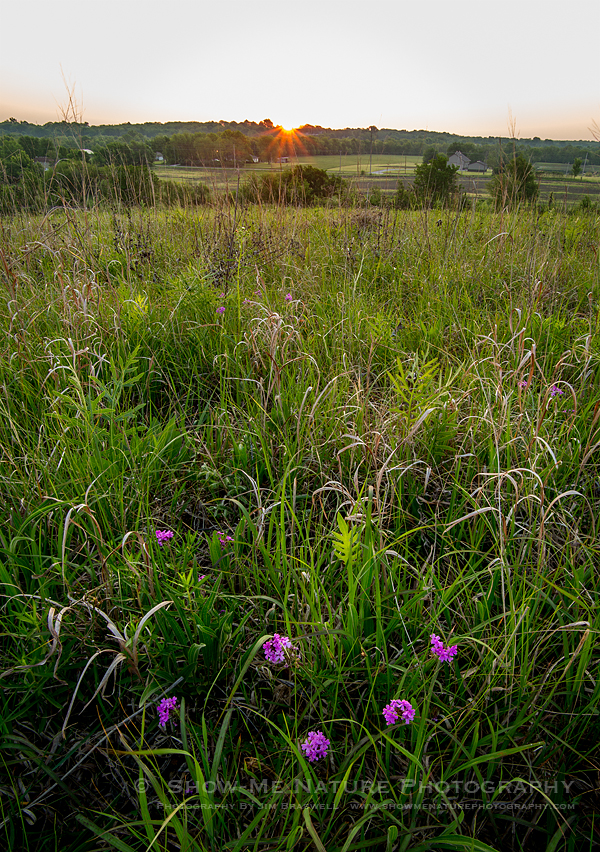 Sunrise Over Snowball Hill Prairie