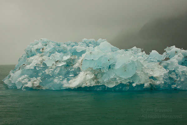 Blue Ice in LeConte Bay, Alaska