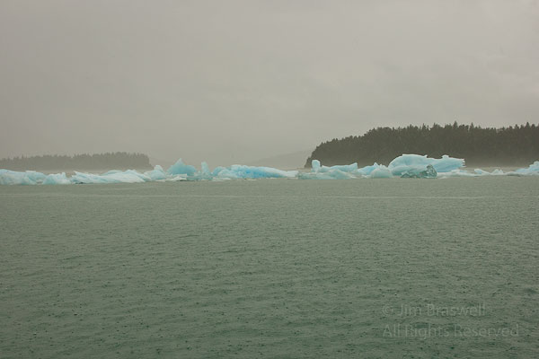 Blue Ice as we approach LeConte Glacier, Alaska